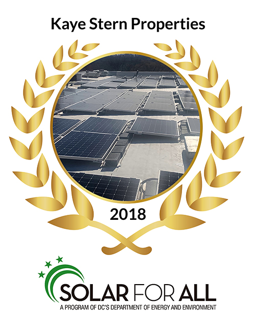 Solar For All Award – Kaye Stern